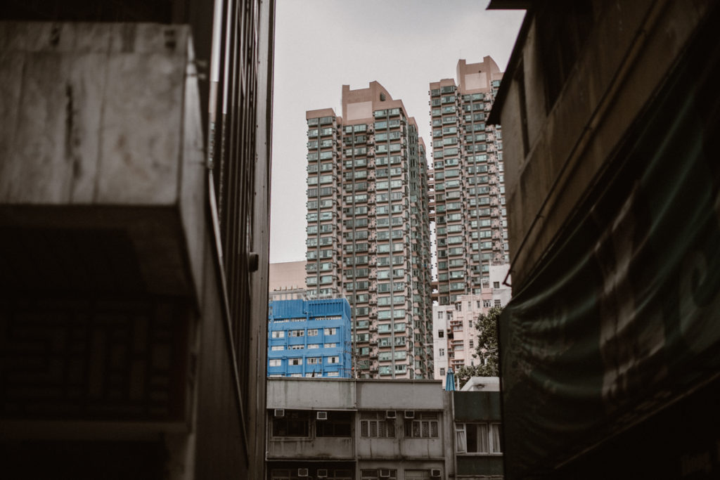 hong kong jungle urbaine